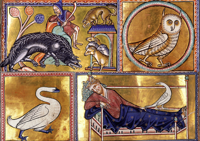 The Wolf - The Owl - The Swan - The Caladrius